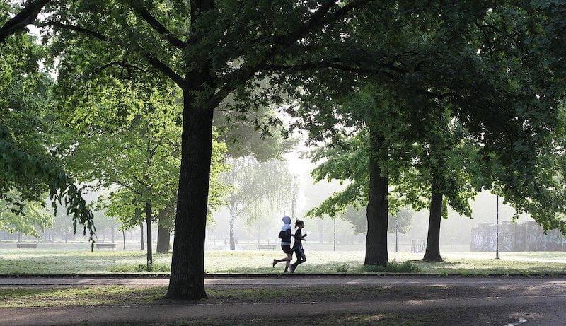 Joggen für Anfänger - Laufen im Park
